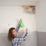 Pleasant Hill-Mold-Remediation