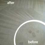 Pleasant Hill-Wine-Stain-Carpet-Cleaning